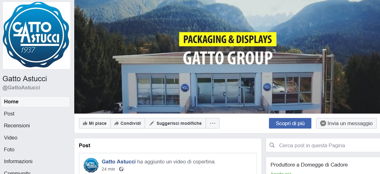 gatto group su facebook