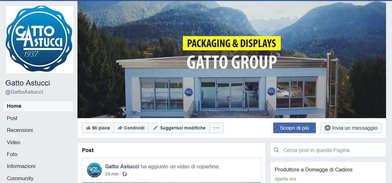 gatto group su facebook